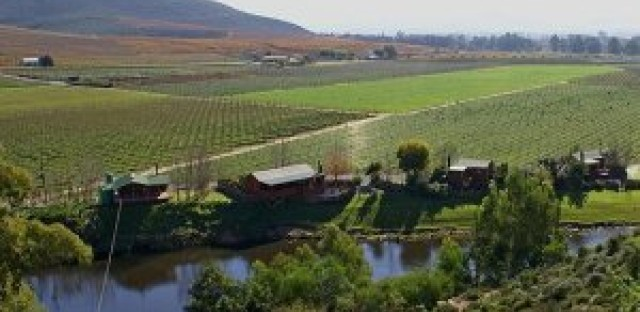 Broken Promises of Land Reform in South Africa