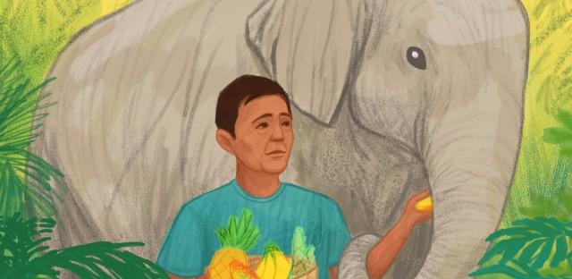 elephant catcher