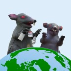 Rat Balloons Updated Thumbnail