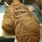 Morning Shift: New discoveries about ancient mummies in Chicago