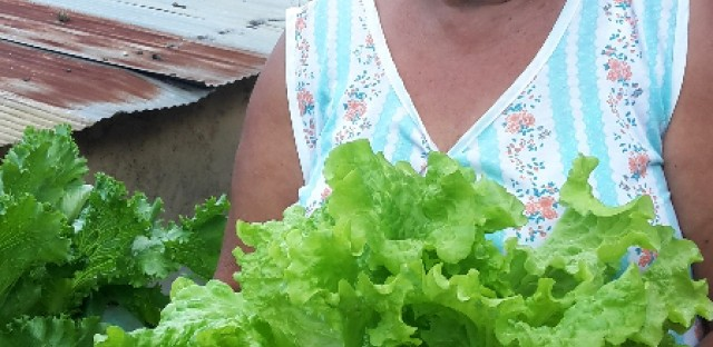 """Josefina Requena holds salad greens she grew herself in a small garden in her yard in a Caracas slum. """"All my life, I've loved to plant all sorts of plants,"""" Requena says. """"But over the past two years, things have become much more difficult, so I am taking gardening a little more seriously."""""""