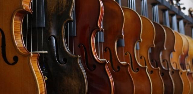 violins in a row