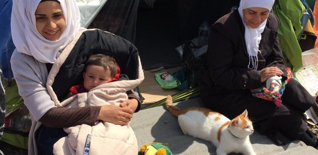Taboush the cat with his family. Palestinian refugees from Yarmouk camp in Damascus fled the war and Assad oppression with their cat. (Photo courtesy of Zaher Sahloul)